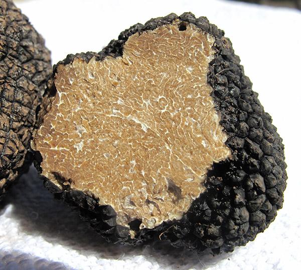Brisures de truffe